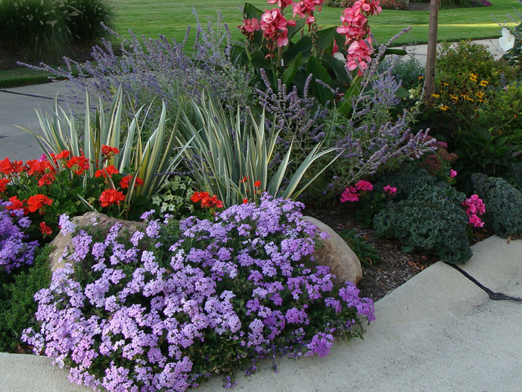 Transforming a barren median entry into a colorful flowerbox.