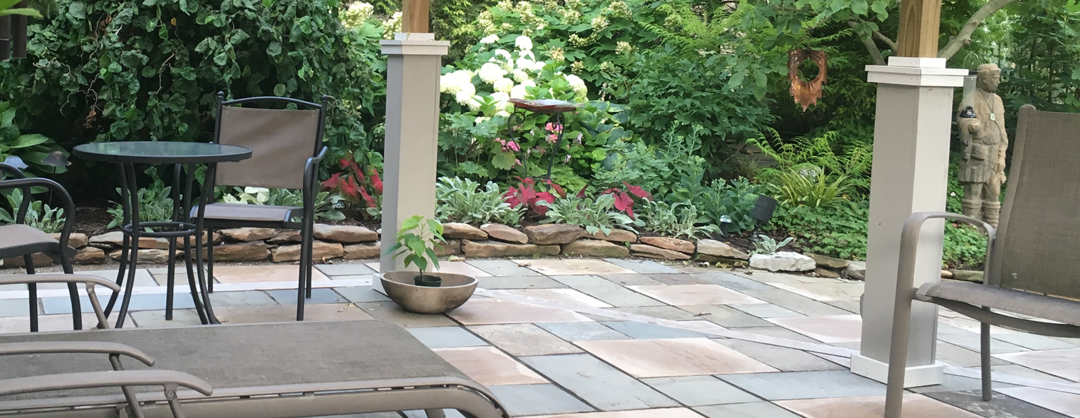 Transforming A Backyard By Creating A Shaded Patio.