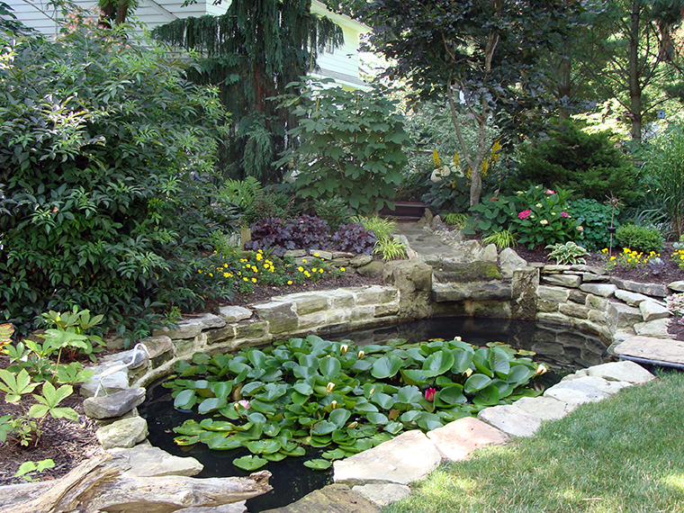 ML-WATERgallery-ponds-SHOTOFGARDEN182
