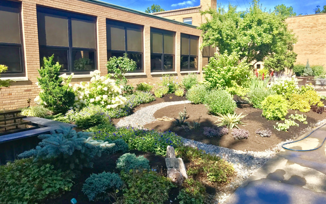 Transforming Bay High School unused courtyard into a student gathering place.